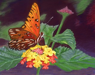 Flower and Butterfly Fine Art Print