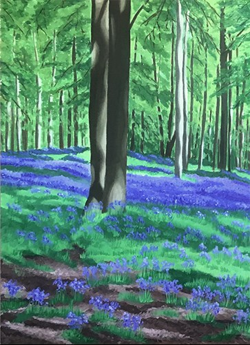 Bluebell Woods - Detail1