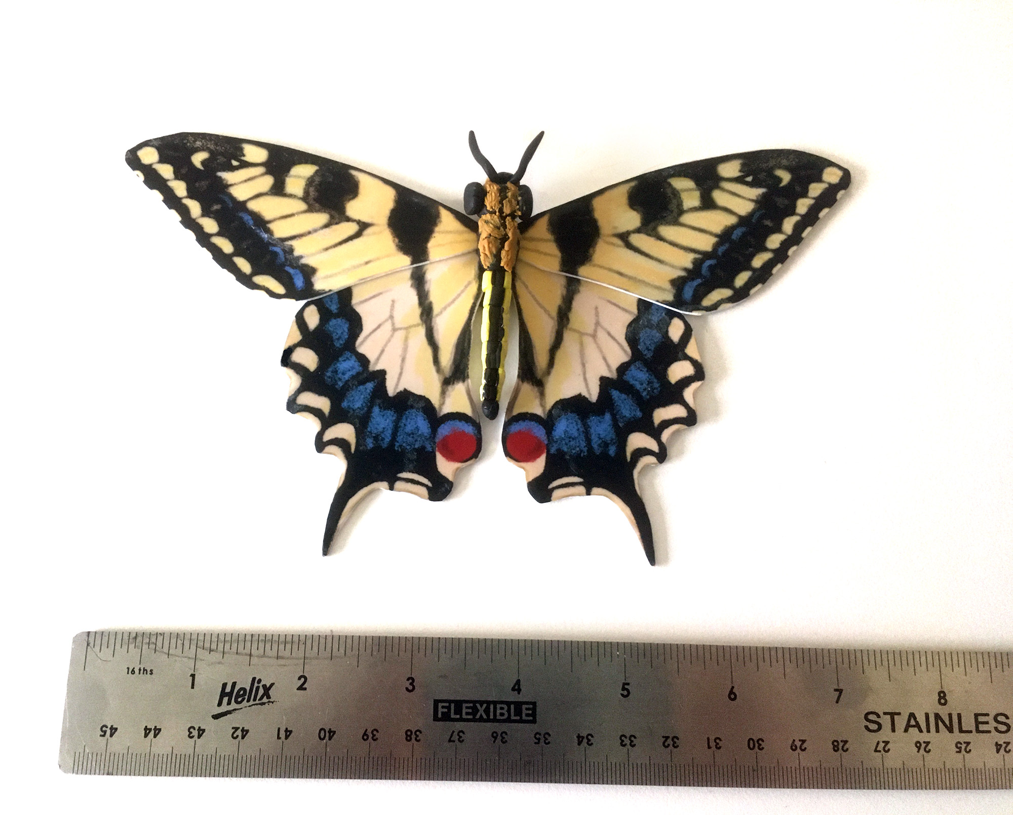Small Swallowtail Butterfly