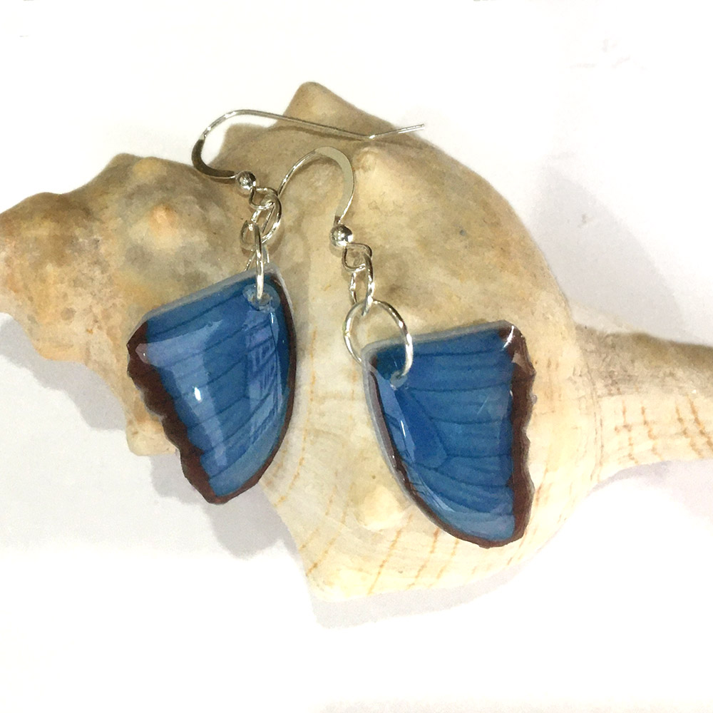 Blue Morpho Butterfly Wing Earrings